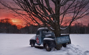Picture winter, snow, sunset, tree, Canada, Ontario, Canada, pickup, Ontario, 1951 Ford F1
