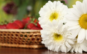 Picture flowers, bouquet, strawberry, white