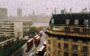 Picture Macro, The city, Rain, City, Rain