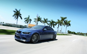 Picture palm trees, bmw, BMW, in motion, e92, 3 series