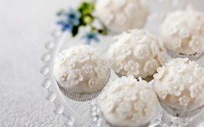 Picture white, Candy, sweets, yummy, flowers