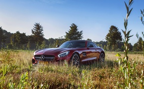 Picture car, Mercedes, nature, AMG, GT S, Edition One