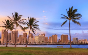 Picture sea, the sky, grass, clouds, bench, tropics, palm trees, lawn, shore, home, yachts, Hawaii, Bay, …