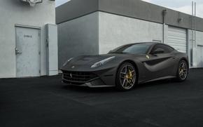 Picture Ferrari, Black, Matte, Berlinetta, F12