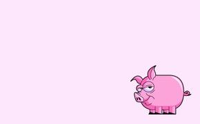 Wallpaper pink, minimalism, tail, pig, pig