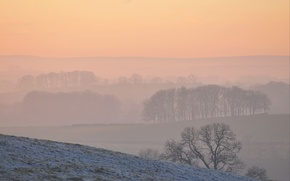 Picture cold, winter, snow, fog, seasons, hills, morning, frost, weather, snow, slopes, hills, trees trees