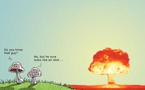 Wallpaper mushroom, bomb, humor, Wulffmorgenthaler, atomic explosion