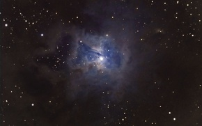 Picture nebula, Tsefey, Iris, in the constellation, reflective, accumulation, with multiple, star