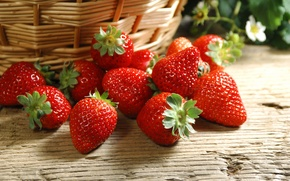 Picture Wallpaper, strawberry, berries