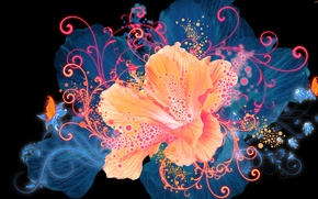 Picture Graphics, Flower, Flower, Glow