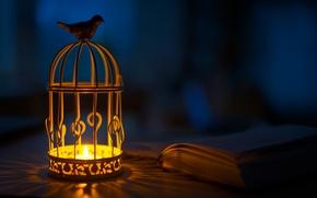 Picture light, bird, candle, flashlight, lantern, shadows, book