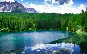 Picture forest, trees, landscape, mountains, Italy, lake Carezza