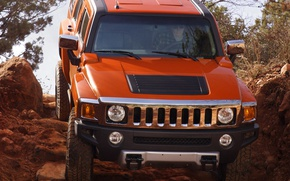Picture SUV, Hummer, H3