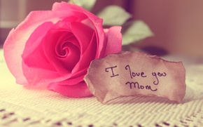 Picture love, rose, note, words, mom, tablecloth