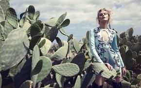 Picture girl, cacti, Juju Ivanyuk