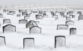 Wallpaper cold, winter, snow, life, meaning, loneliness, cemetery, frontier, summary