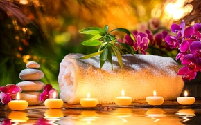Picture flowers, towel, candles, orchids, flowers, candles, orchids, towel, Spa stones, Spa stones