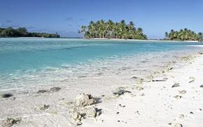 Picture beach, palm trees, the ocean, shore, exotic, Laguna