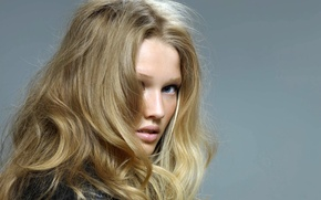 Picture look, girl, face, grey, background, model, hair, blonde, Toni Garrn, Victoria's Secret Angel, Toni Garrn