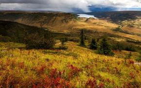 Picture lake, hills, panorama, USA, Alaska, Denali National Park