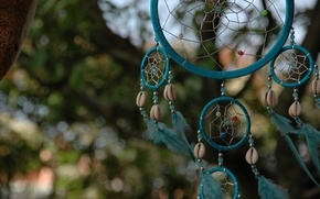 Picture feathers, talisman, amulet, Dreamcatcher, Dreamcatcher