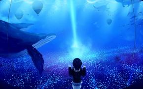 Picture girl, fish, school uniform, whales, rays, aquarium