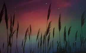 Picture the sky, Aurora, Cape Cod