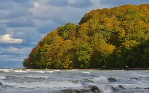 Picture sea, wave, autumn, the sky, trees, clouds, storm, Nature, storm, sky, trees, sea, nature, autumn
