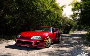 Picture red, supra, road, trees, toyota
