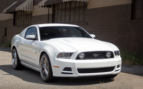 Picture Mustang, Ford, 5.0, White, Street