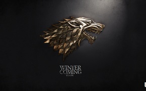 Picture winter, Game of thrones, Stark, Martin George R.R.