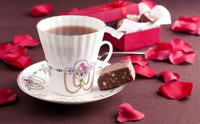 Picture tea, chocolate, petals, candy, box, flowers, cup, chocolate, petals, tea, candy, ribbon, Cup