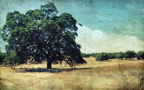 Picture landscape, style, background, tree
