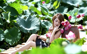 Picture summer, girl, flowers, Asian
