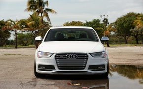 Picture Audi, white, front, vossen wheels