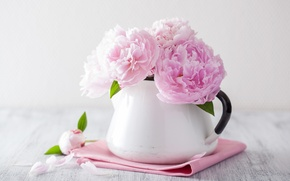 Picture flowers, petals, still life, pink flowers