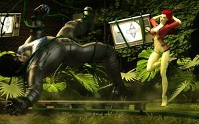Picture Arkham Asylum, Nightwing, Poison Ivy, Pamela Lillian Isley, Poison Ivy, Dick Grayson, Nightwing