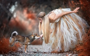 Picture forest, girl, dog, dress, Shiba Inu, Encounter with the wood fairy