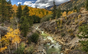 Picture autumn, mountains, river