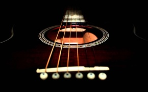 Picture macro, music, guitar, strings