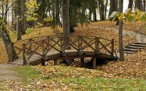 Picture autumn, bridge, nature, Park