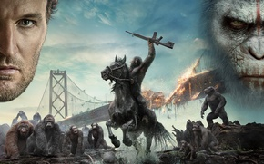 Picture bridge, weapons, fiction, fire, horse, monkey, devastation, the leader, Planet of the apes: the Revolution, …