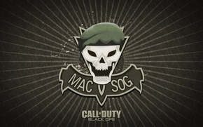Picture sake, Call of Duty, game, military, Call of Duty Black Ops, beret, mac sov