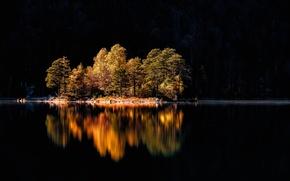 Picture autumn, trees, island, Germany, Bayern, lake Eibsee