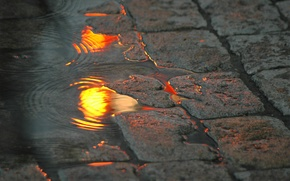 Picture water, lights, reflection, street, pavers, puddle