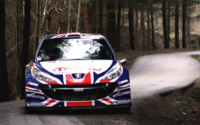Picture Machine, Logo, Lights, Auto, Race, The front, Peugeot, The hood, WRC, Peugeot, Rally, Sport, Rally