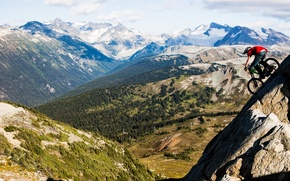 Picture forest, bike, the descent, height, Mountains, bike, extreme, Ryder, freeride, freeride, nuts