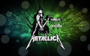 Picture guitarist, rock, metallica, electric guitar, bass guitar, robert trujillo
