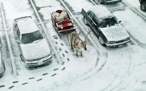 Wallpaper sleigh, gifts, Parking, machine, deer, street, bags, traces
