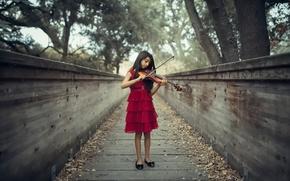 Picture violin, girl, The Violinist